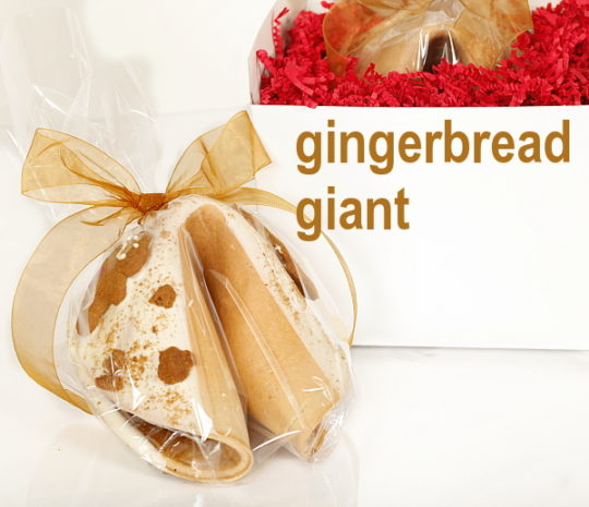 gingerbread-giant-fortune-cookie-box